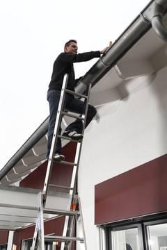 Пример использования Универсальная лестница Tribilo с допфункцией